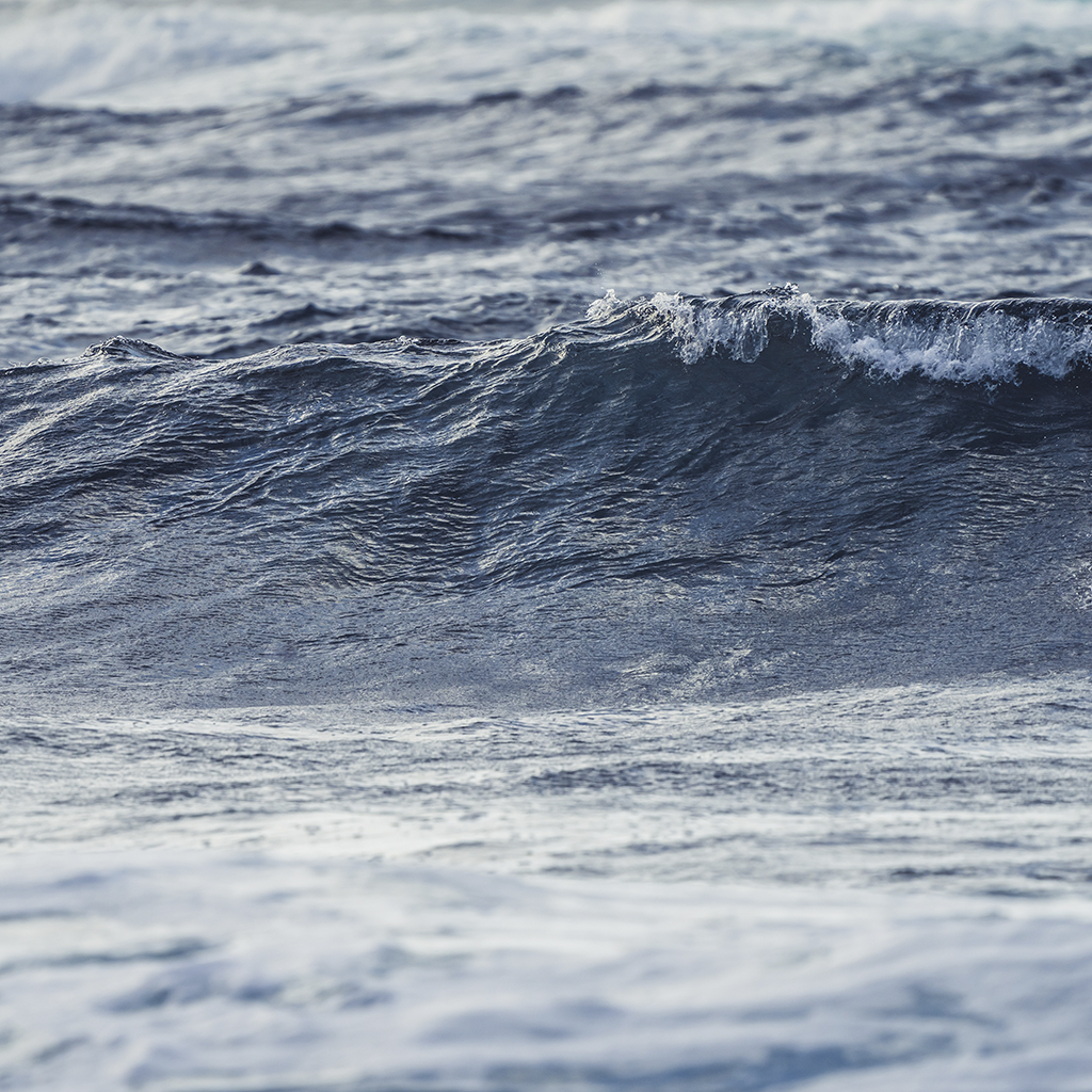 Derecha_Majanicho_Surf